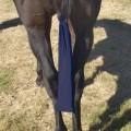 Centaur® Stretch Tail Bag