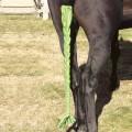 Centaur® Stretch Braid  n Tail Bag