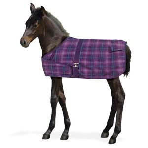 Centaur® 600D Foal Turnout Blanket- 200 Gram