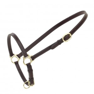 Ovation® Leather Traditional Grooming Halter