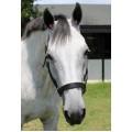 PINK Pomms Equestrian Earplugs