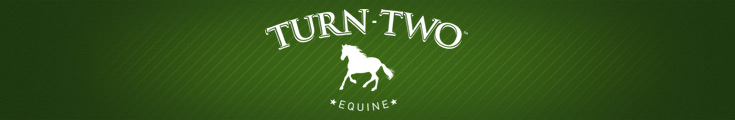 Turn-Two Equine