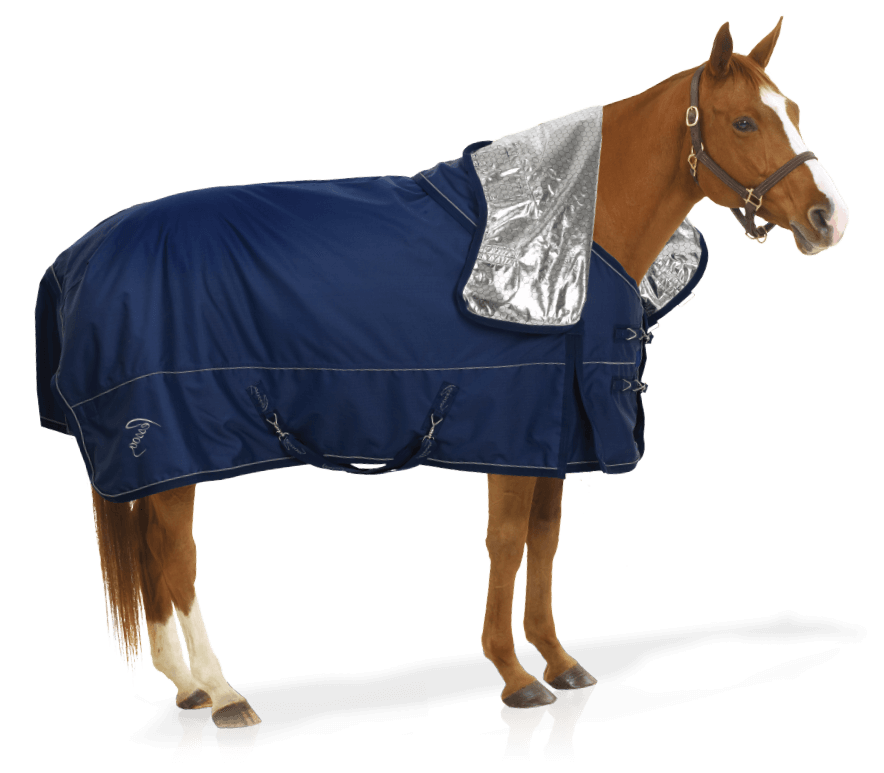 ERS Horse Blankets & Gear