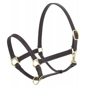 Camelot® Stable Halter