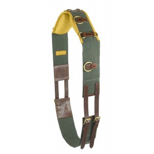 Camelot® Web & Leather 10-Ring Training Surcingle