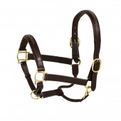 Aramas® Fancy Square Raised Padded Halter