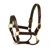 HK Americana Fancy Stitched Green Leather Padded Halter